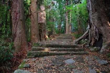 熊野古道大門坂 image