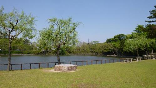 奈良公園 image