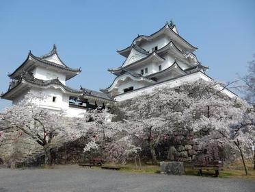 伊賀上野城 image
