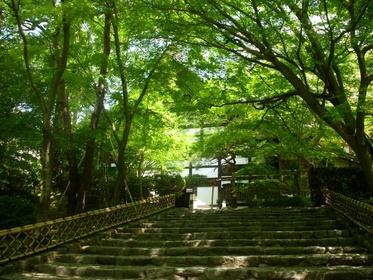 龍安寺 image