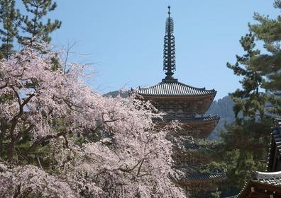 Daigoji image