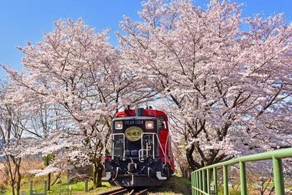 Sagano Romantic Train image