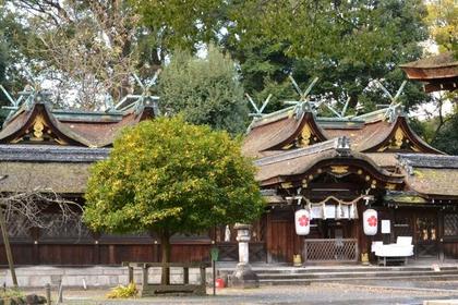 平野神社 image