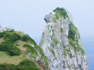 Monkey Rock image