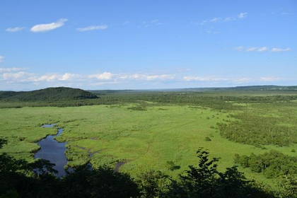 Kushiro National Park image