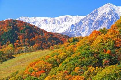 中部山岳国立公園 image