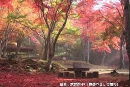 京都府立笠置山自然公園 image