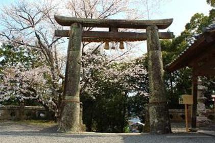 Takeo-jinja Shrine (The Great Takeo Camphor Tree) image