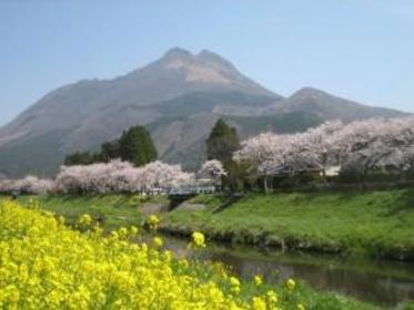 Mt. Yufu image