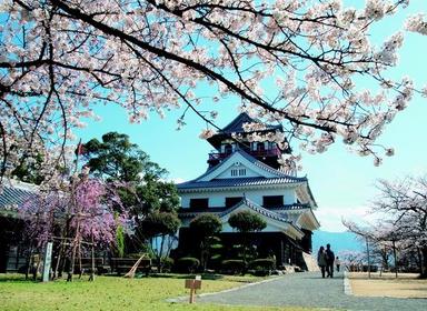 Kawanoe Castle image