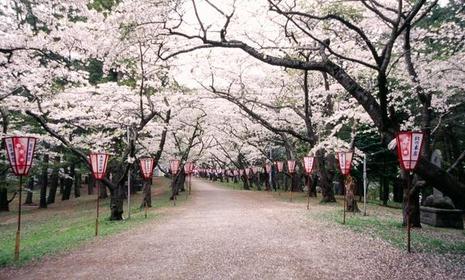 Ashino Chishogun Prefectural NaturalPark image