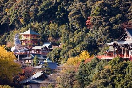 Mt. Shigi image