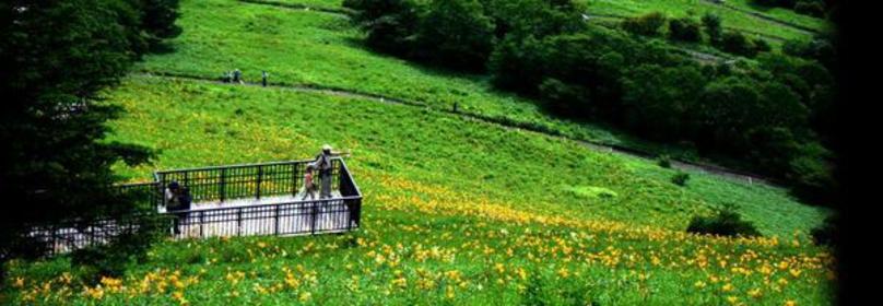 Nikko Kirifuri Highland, Kisuge-daira Park image