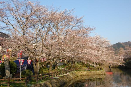 鹿野城跡公園 image
