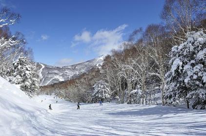 蓮池スキー場 image