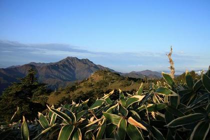 Mt. Kamegamori image