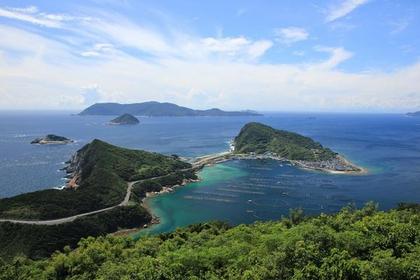 Kashiwa Island image