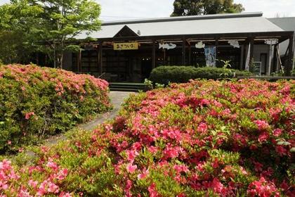 四万十川学遊館(あきついお) image