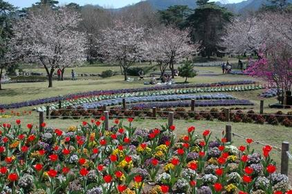 벳푸 공원 image