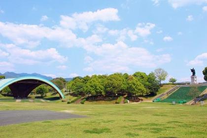 杏之丘 image