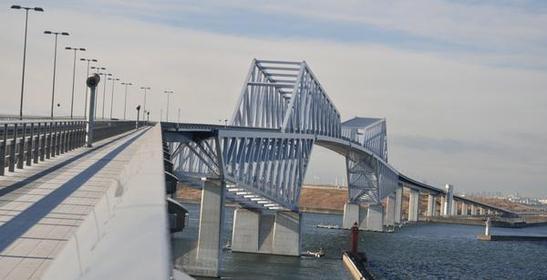 Tokyo Gate Bridge image