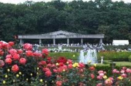 神代植物公园 image