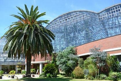 梦之岛热带植物馆 image