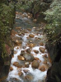 Kirishima Shinsui Gorge image