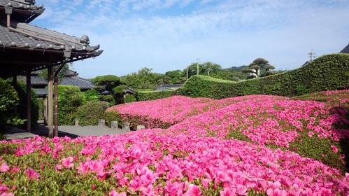 平山亮一邸庭園 image