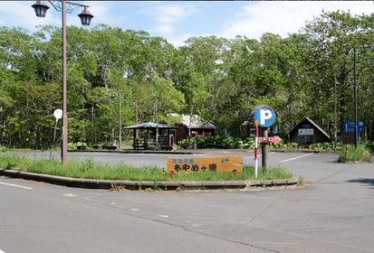 Ayamegahara Wild Iris Garden image