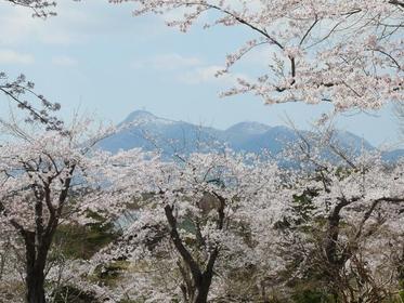 早掛沼公園 image