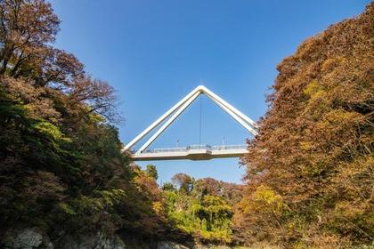鱍泷桥 image