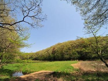 野山北  六道山公园 image