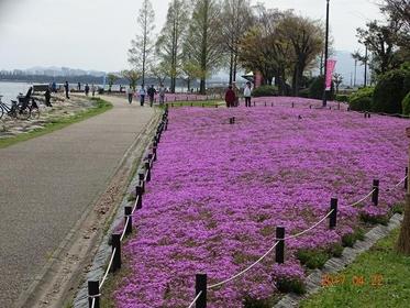 海濱步道 image
