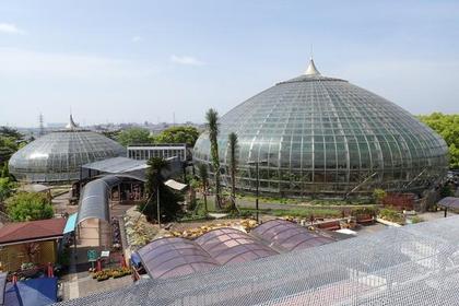 히메지 시립 데가라야마 온실 식물원 image