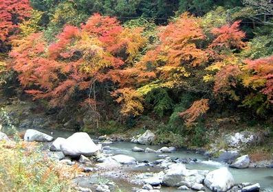 다마가와쿄 협곡 image
