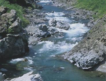 佐井の鳴滝 image