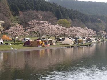 志高湖 image