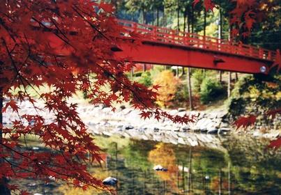 Ukai Valley Nature Park image