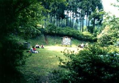 表丹沢県民の森 image