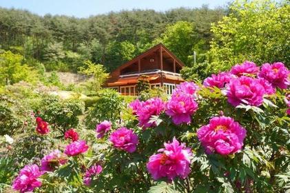 鮮花與泉水公園 image
