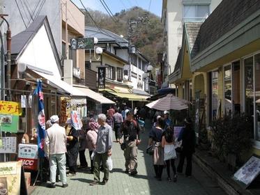 岩畳通り商店街 image