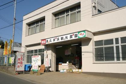 津久井浜観光農園 image