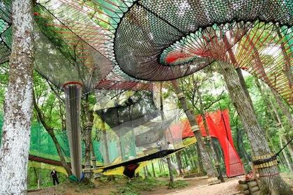 森の空中あそび「パカブ」 image