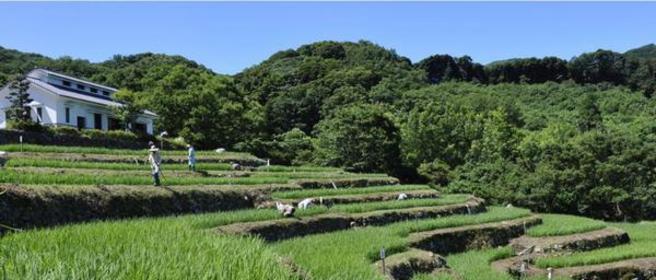 石部梯田 image
