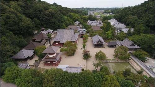 天野山 金剛寺 image