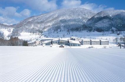 タングラムスキーサーカス image
