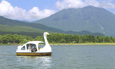 Organic Resort IIZUNA 東 KOGEN(オーガニック リゾート イイズナ ヒガシ コウゲン) image
