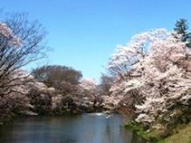 棚倉城跡(亀ヶ城公園) image