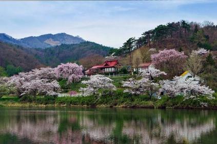 꽃과 역사의 고장 자노하나 image